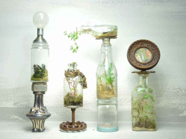 The-Slug-And-Squirrel-Terrarium-1-728x545